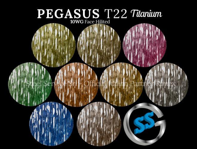 10WG gallery (6) PEGASUS T22