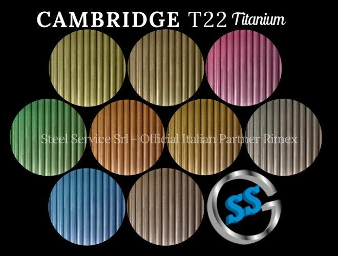 CAMBRIDGE gallery (5) T22